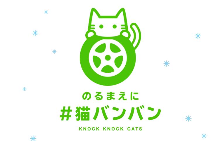 【猫ネタ】今年も猫バンバンを!!不幸な事故を未然に防ぐ「#猫バンバン」運動とは・・・!?-#猫バンバンプロジェクト-