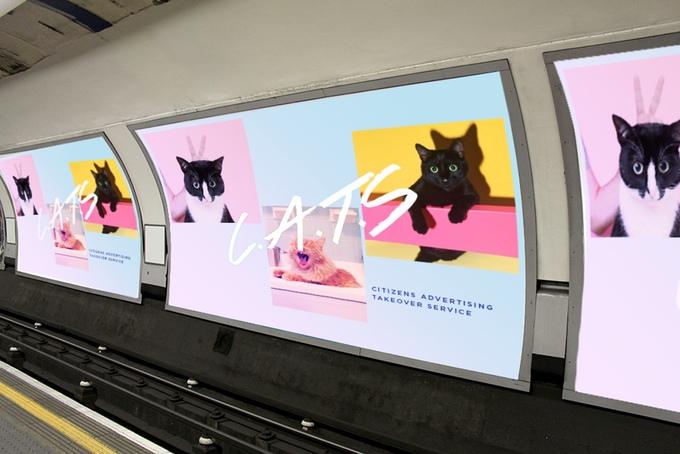 【猫ネタ】猫が駅ジャック!?ロンドンで計画された猫好き団体の計画とは・・・!?-C.A.T.S-