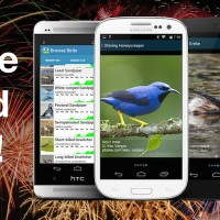 BirdsEye comes to Android smartphones