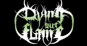Dying out Flame [ Band Biography ]