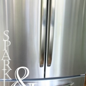 How to clean Stainless Steel Appliances via Nest of Posies