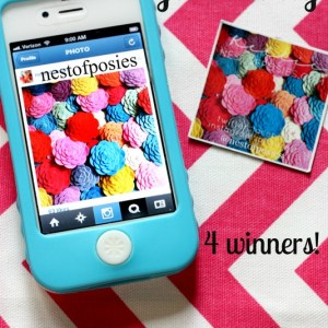 It's a Stickygram giveaway!  4 winners!!! via Nest of Posies