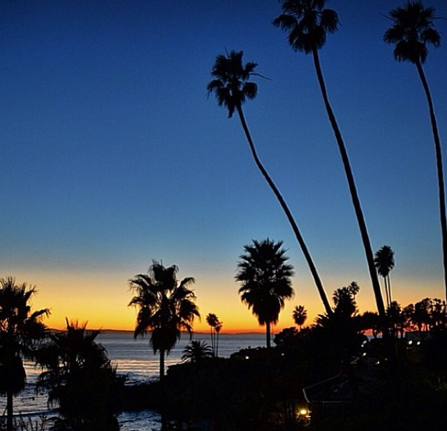 On the cliffs at Sunset Laguna Beach