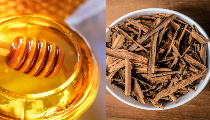 honey-and-cinnamon-is-an-ancient-remedy-for-disease-netmarkers