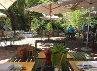 Lunch auf dem Weingut Spier