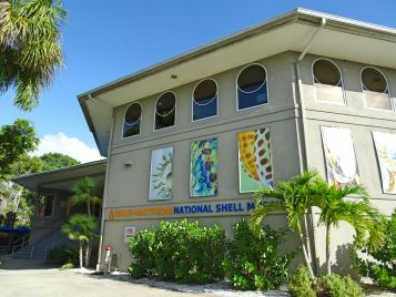 Muschelmuseum