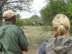 Bush Walk - Africa on Foot