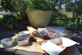 Picknick auf der Spier Wine Farm