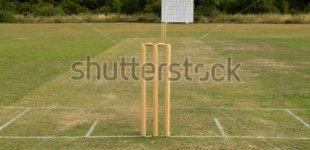 stock-photo-cricket-pitch-with-wicket-and-stumps-302103263