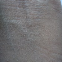 CAOLION Sensitive BB Tinted Moisturizer Review, Swatches
