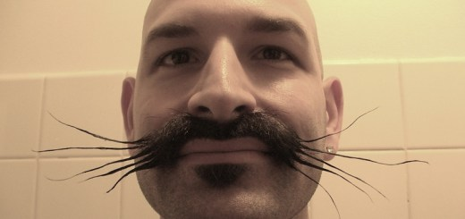 Styled Whiskers