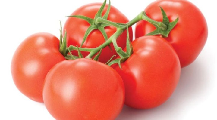 tomatoes_New_Love_Times