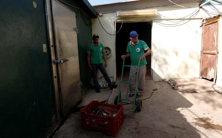 venezuela_zoo11