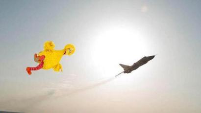 friday-big-bird