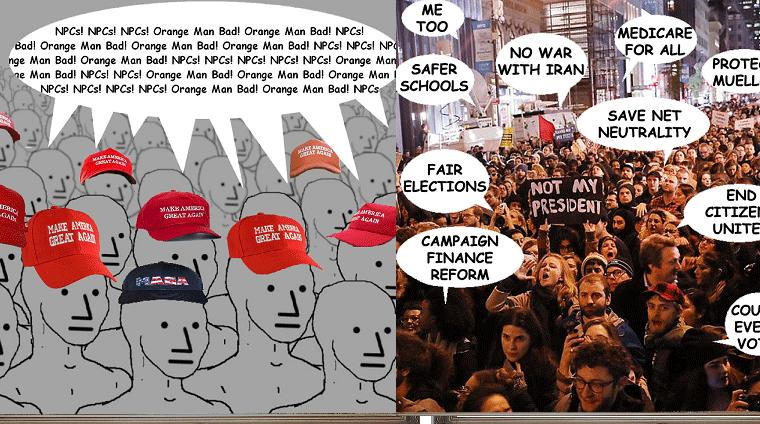 NPCs and The Orange Man Bad, How These Protestors See Those Other Protestors