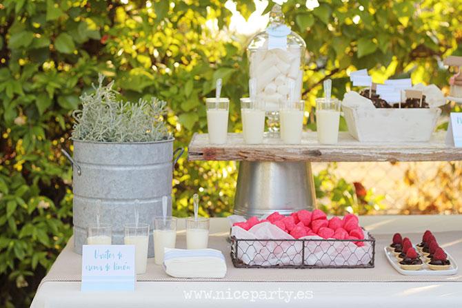 Nice Party mesa de dulces fiesta de verano (6)