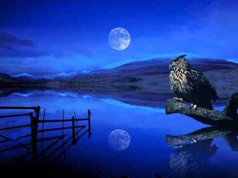 vollemaan2 490x367 Nieuwe maan in ram: maand met energie van de krijger! Dana Mrkich