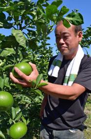 田中さんは農作物のほとんどを「農家の直売所」に卸す(和歌山県紀の川市)