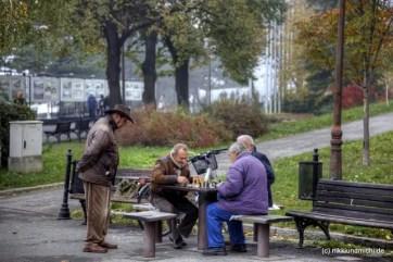 Männer spielen Schach im Park der Belgrader Festung.