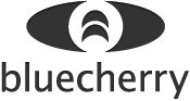 Bluecherry DVR Logo