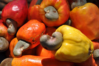 Cashews University of Montreal says cashews may treat diabetes photo