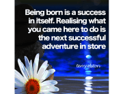 Being born quote terry elston