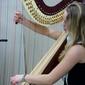 Viele Strings: die Harfe mit Musikerin