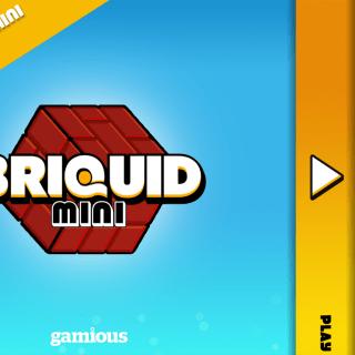 briquid-1