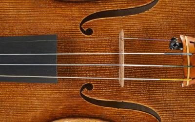 Nolli-Violino2011-Evidenza-min