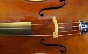 violoncello-Acopertina-min