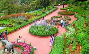 Tourist Places to visit in Ooty - Botanical garden