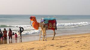 Puri Tourist Places to visit in Puri Sightseeing - Beach