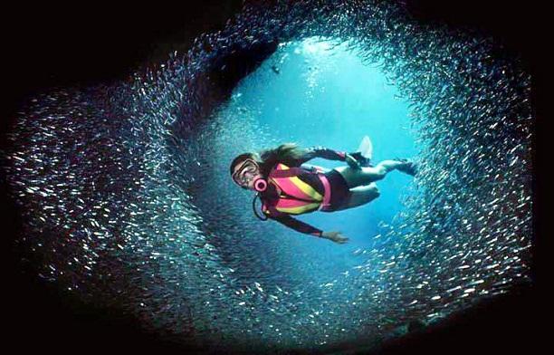 Lakshadweep Scuba Diving Sites - Scuba diving in Lakshadweep
