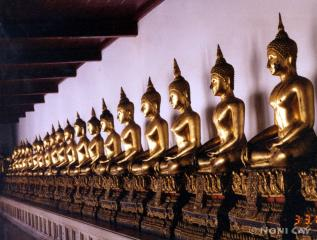 A Long Line of BuddhasinThailand