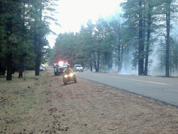 Kaibab Forest burn crews watch the line along Perkinsville Road.