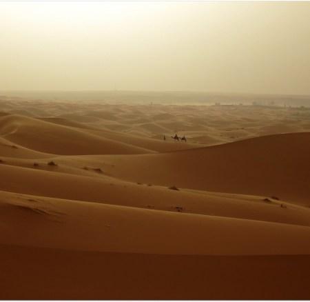 Notas desde el desierto