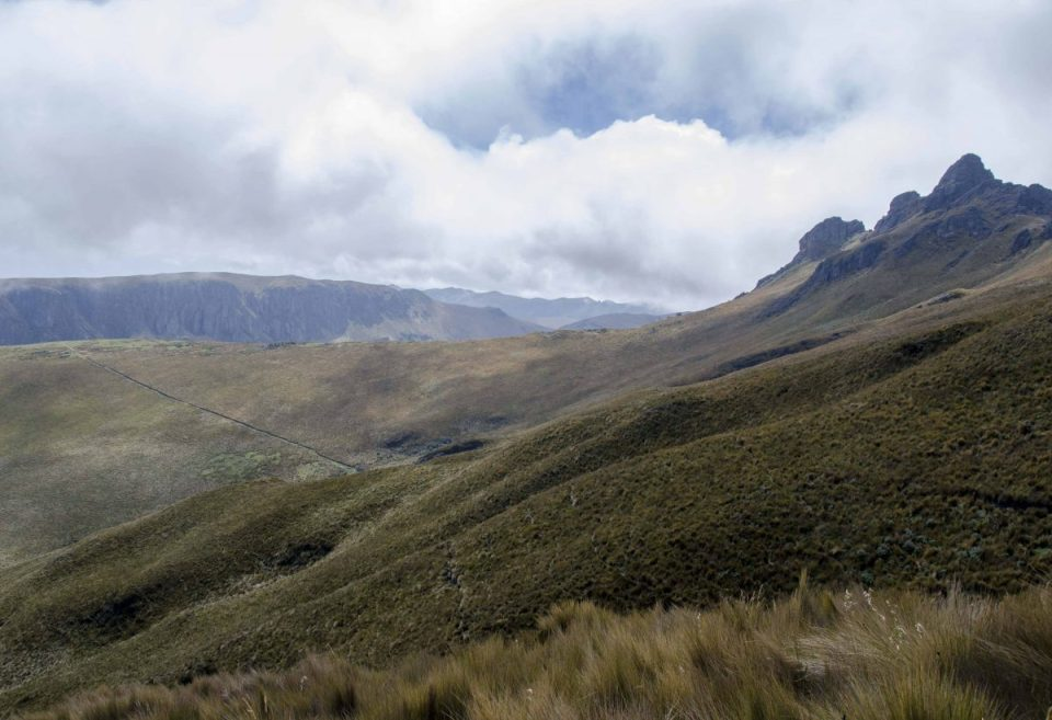 High Paramo of the Andes