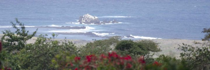 View of the coast from Otoy Farms