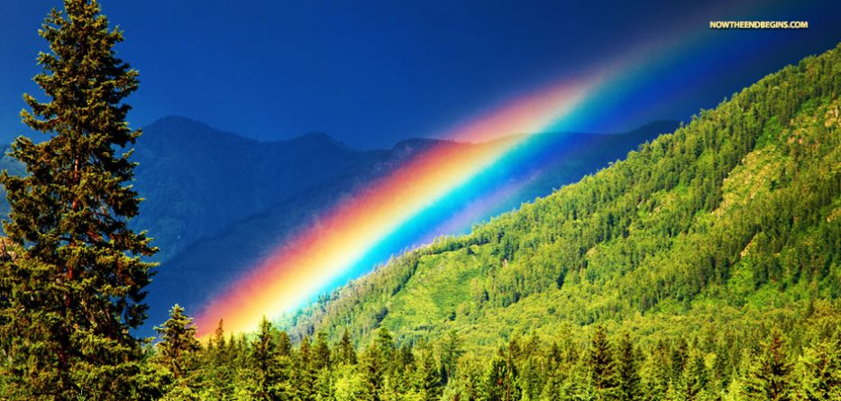 The Major Difference Between God s Rainbow And The LGBT Pride     gods rainbow has 7 colors lgbt pride symbol