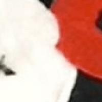 White Poppy Campaign