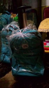 Trolley Bag Kids : Hadiah Susulan Kids Goes To Legoland (My Tour)