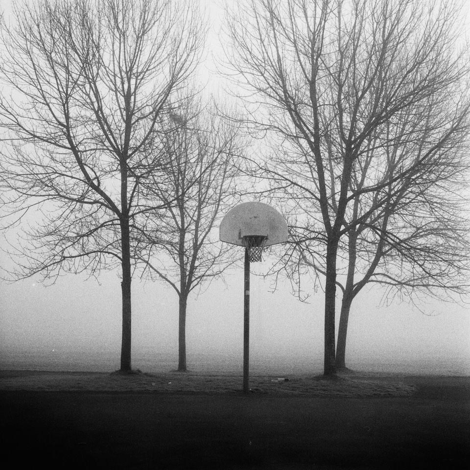 Hoops and Trees, Strathcona Park, Vancouver BC 2015