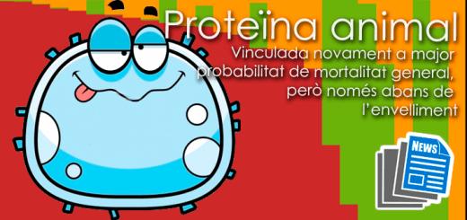 Noticies-ProteinaAnimalCancer65