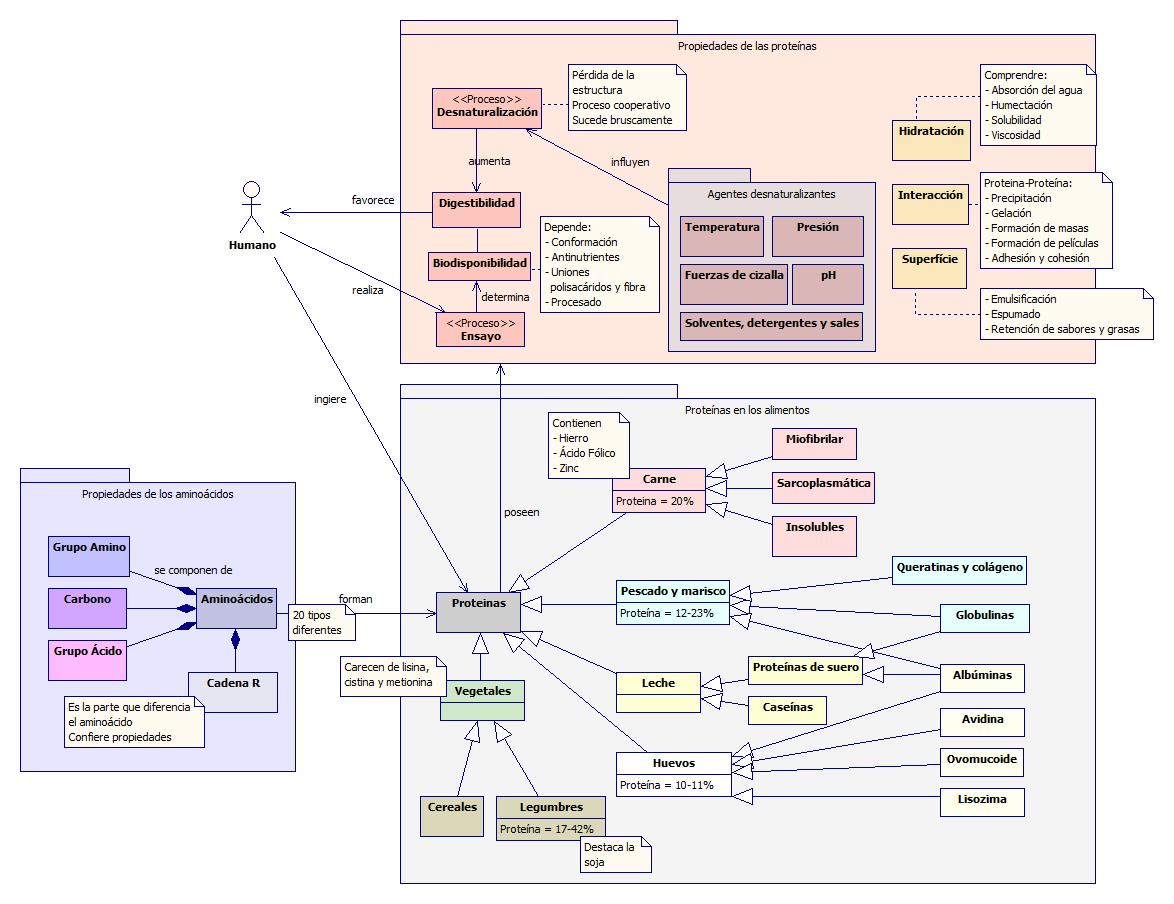UD3 - Proteínas