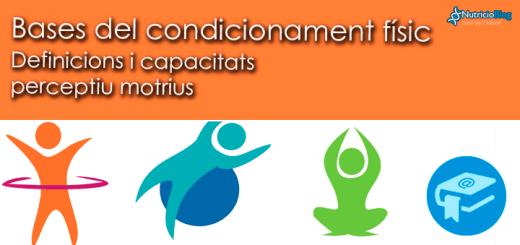 Apunts-Bases-del-condicionament-UD1v2