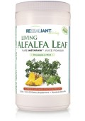 Living-Alfalfa-Leaf-Pineapple-Mint-Powder