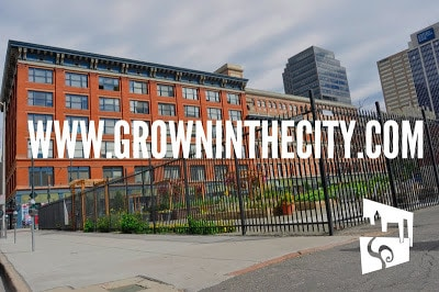 Grown In The City Meets Northwest Edible