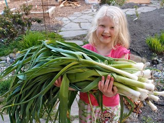 To Do In The Northwest Edible Garden: May 2011