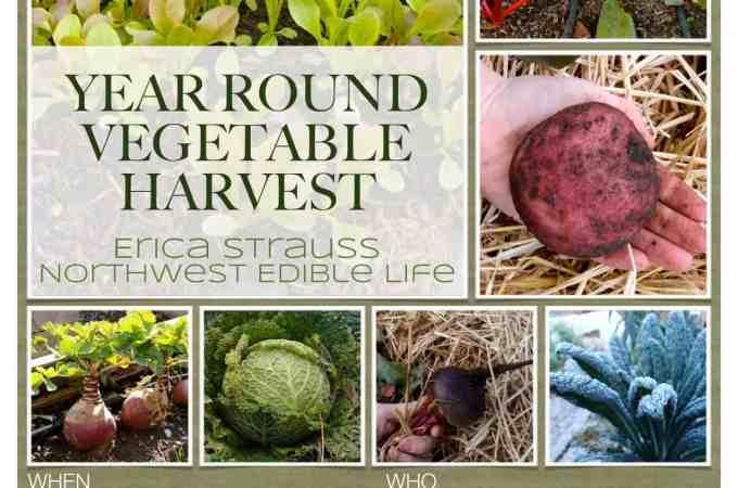 Year Round Vegetable Harvest Presentation – Sat, February 2nd