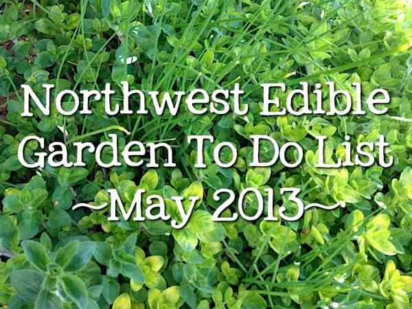 To Do In The Northwest Edible Garden: May 2013